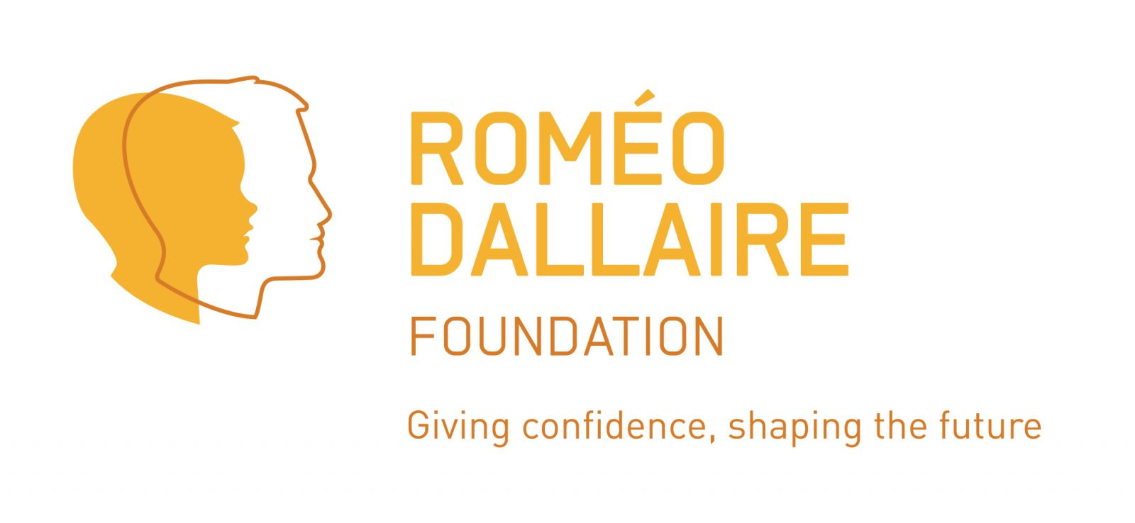 Link to the Romeo Dallaire Foundation website